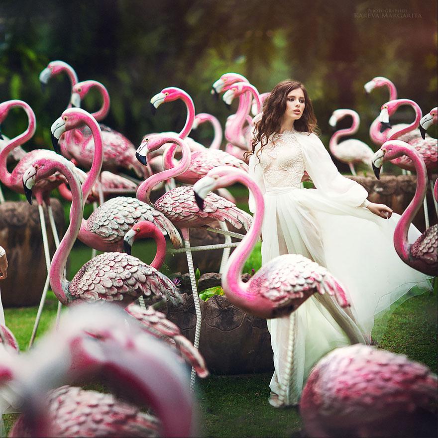 Лучшие фотографии цветов лучших фотографов мира всё