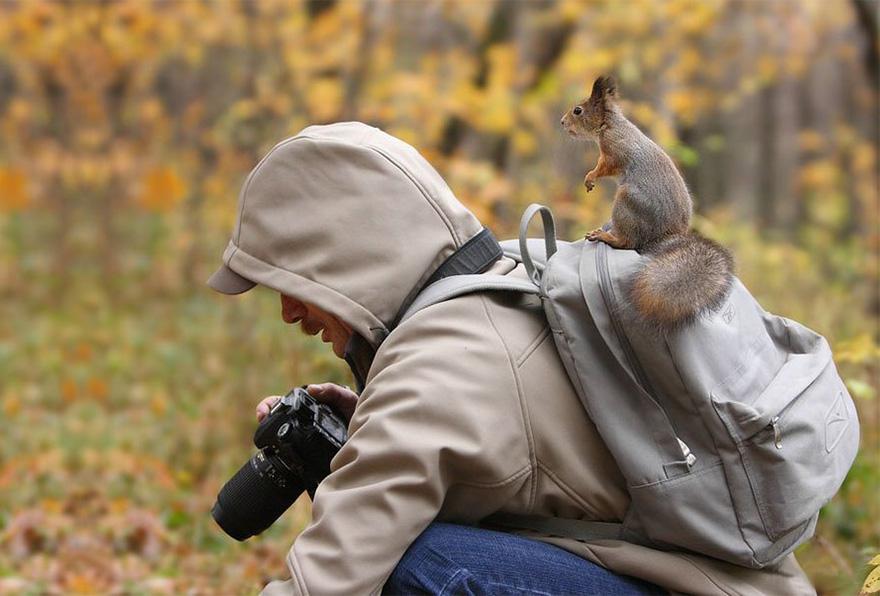 всем животный мир глазами фотографа одна сложная запутанная