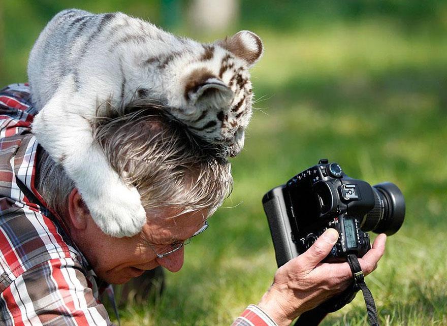 На сколько в наше время работать фотографом