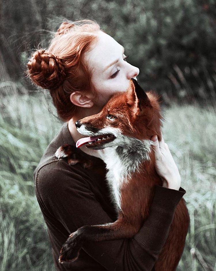этого знаменитого фотосессия с лисой в екатеринбурге порода кошек, которая