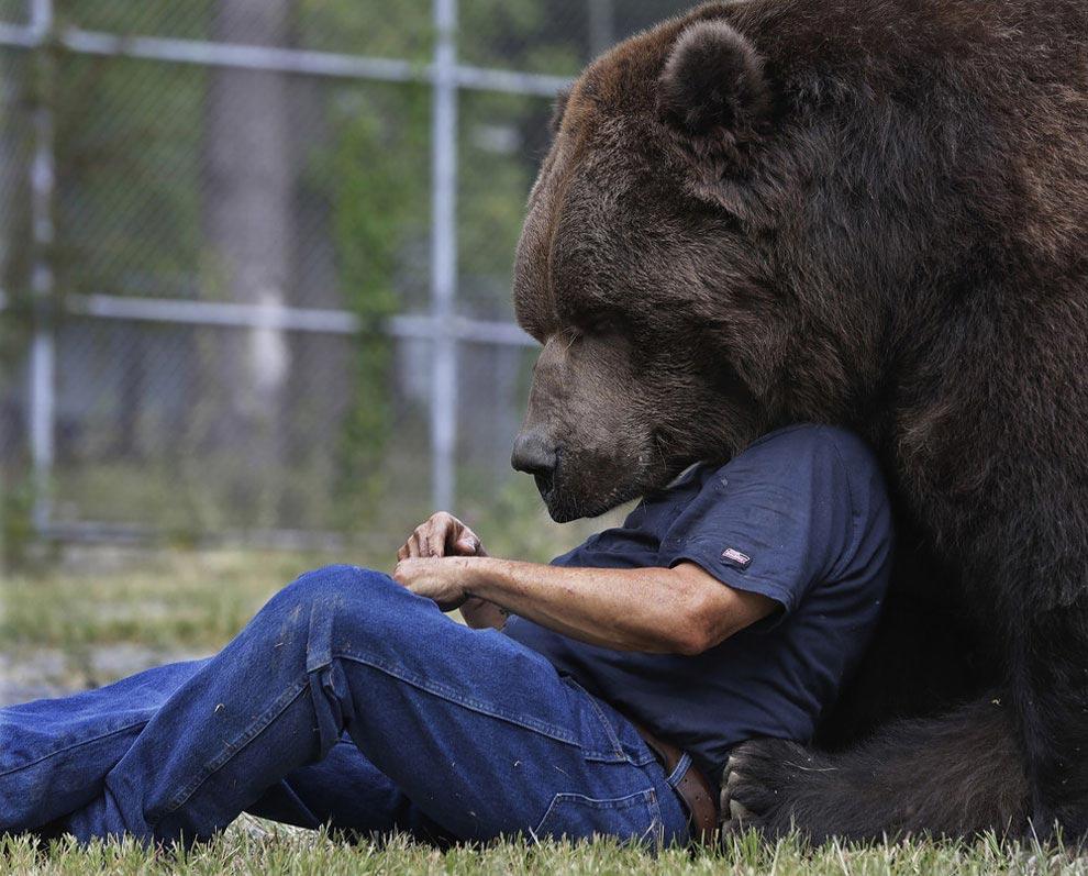 интересное в мире людей и животных фото