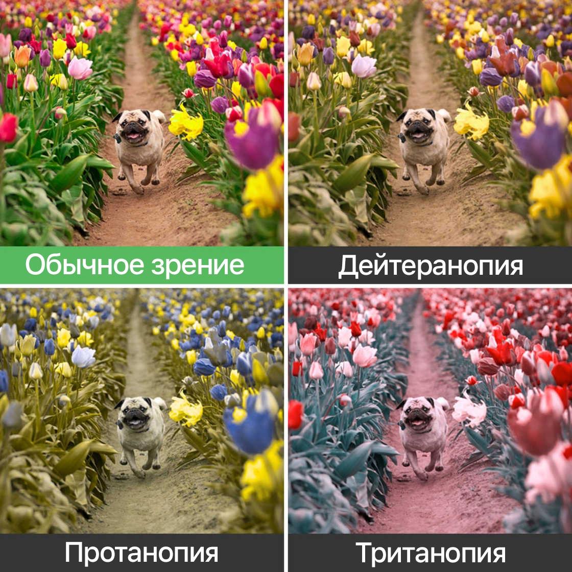 Полки для цветов своими руками фотогалерея отеле западной