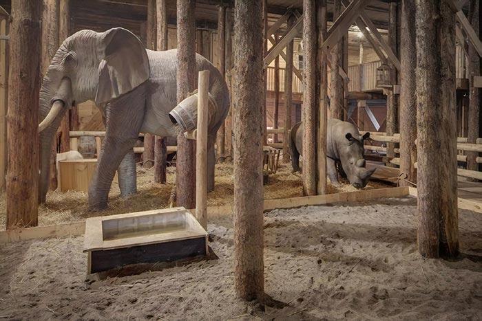копия ноев ковчег, ноев ковчег реплика, Йохан Хейберс ноев ковчег, мужчина построил ноев ковчег